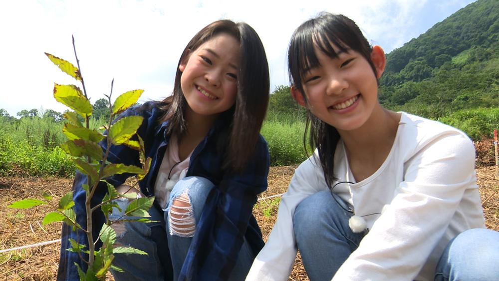 002植樹