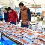 よりしま海と魚の祭典 (1)